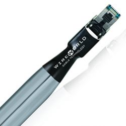 WireWorld - Platinum Starlight Cat8 (PSE) - Ethernet Cable (Single)